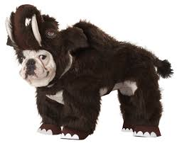 english bulldog halloween costumes dogs in ridiculous halloween costumes how shameful gallery