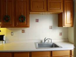 stylish wainscoting in kitchen and traditional kitchen with
