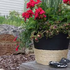 Family Handyman Garden Shed Easy Ways To Dress Up A Cheap Planter Family Handyman