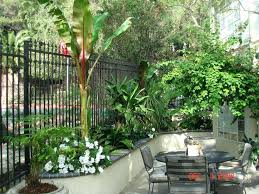Tropical Gardening Ideas Tropical Landscape Design Ideas Tropical Landscape Design Ideas