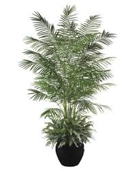 exceptional artificial palm trees with maximum realism at