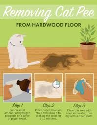 how to clean hardwood floors 7 home decoration i office