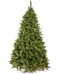 slash prices on 3 5 ft pine pre lit led tree