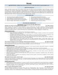 exles of executive resumes executive resume sles prime device sales representative