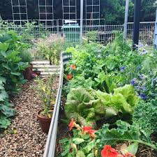 how to start a garden railroad the garden inspirations how to