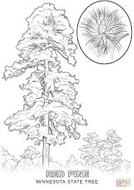 100 free printable tree coloring pages family tree printable