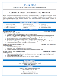 Summary Statement On Resume Examples by Career Counselor Resume Example Guidance And College
