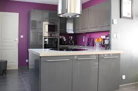 meuble cuisine violet cuisine pourpre pas cher sur 2017 et cuisine équipée violet des