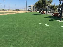 Lawn And Landscape by Synthetic Turf Fox River Grove Illinois Lawn And Landscape Parks