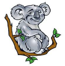 koala bear tattooforaweek temporary tattoos largest temporary