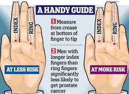 mens rings finger images Finger finger length digit ratio hand news jpg