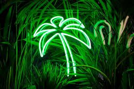 palm tree neon light palm tree neon light freestanding neon sign