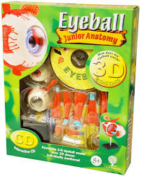 Interactive 3d Anatomy Anatomy 3d Eyeball Model With Interactive Cd Edu Sk007
