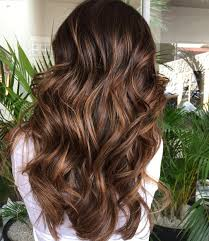 light brown highlights on dark hair dark chocolate brown hair color with highlights 8920418 girlietalk