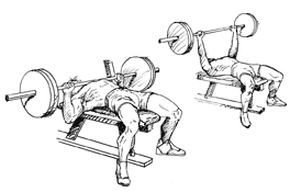 Chest Flat Bench Press Guide To A Healthy Body Chest Workout