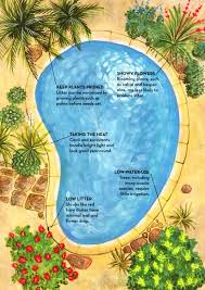 best 25 landscaping around pool ideas on pinterest plants by