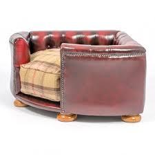 oxblood chesterfield sofa with inspiration ideas 49497 imonics