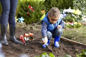 Buy Soil For Vegetable Garden by Want Your Kids To Talk To Nature This Summer Vacation Try Kids