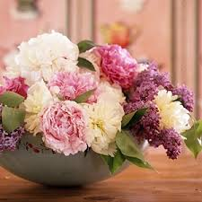 peony arrangement 34 best peony flower arrangements bouquets images on