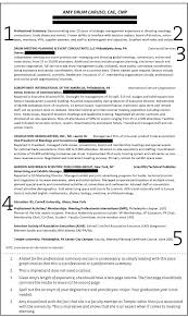 resume template professional designations and areas professional resume summary resumes exle with technology