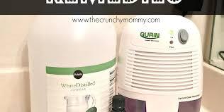 Bathroom Dehumidifier 3 Natural Remedies For Bathroom Mold U0026 Mildew Dehumidifier The