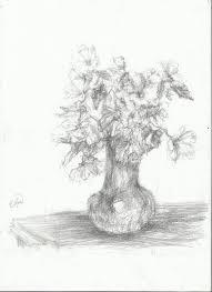 Pencil Sketch Of Flower Vase Pencil Flowers In A Vase Drawing Nightwithdeer Flowers And Leaves