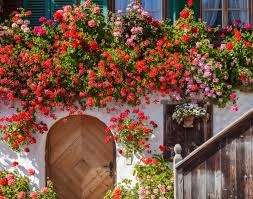 decorating home with flowers beautiful floral landscapes the most gorgeous entryways plus