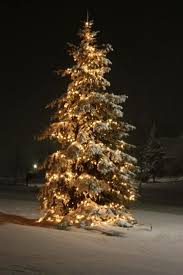 82 best traditional christmas lights images on pinterest
