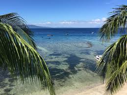 papa freds beach resort puerto galera philippines booking com