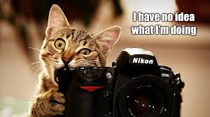 Photography Meme - image 253242 i have no idea what i m doing know your meme