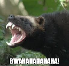 Honey Badger Meme Generator - laughing badger imgflip
