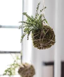 Plants Home Decor Home Decor Trend Diy Kokedama Hanging Plants Instyle Com