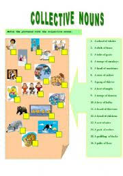 collective noun lessons tes teach