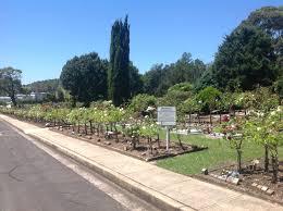 wollongong botanic gardens wollongong city memorial gardens and crematorium in unanderra new
