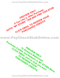 check stub maker paystub generator instant preview free