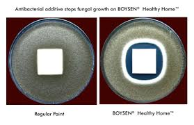 healthy home paint boysen boysen healthy home u003cbr u003e odor less