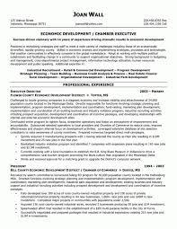 Non Profit Resume Executive Director Non Profit Resume Samples Of Resumesexecutive