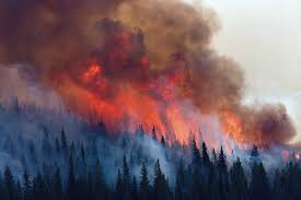California Wildfires 2007 Environmental Effects by Ehp U2013 Fields And Forests In Flames Vegetation Smoke And Human Health