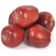 apple red bare root red delicious bisbee spur apple tree semi dwarf