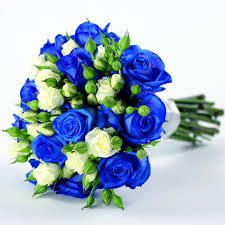 blue roses for sale knumathise real blue roses for sale images