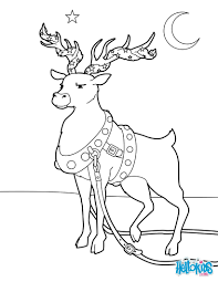 reindeer adorned for christmas coloring pages hellokids com