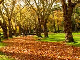 Autumn Colors 55 Gorgeous Autumn Photos Taken By Budget Travelers Budget Travel