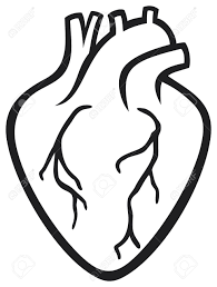 human heart royalty free cliparts vectors and stock illustration