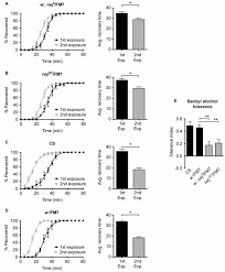 frontiers alcohol induced neuroadaptation is orchestrated by the