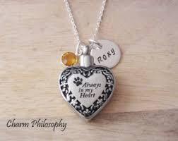 pet ashes necklace pet urn necklace etsy