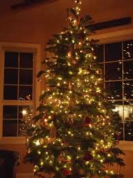 general atariage forums home blue traditional tree