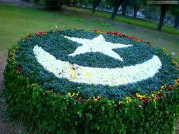 Pakistan Flag Picture Pakistan Flag Art U2013 Hd Wallpapers Images Pictures Desktop