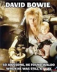 Bowie Meme - david bowie funny meme pics bajiroo com
