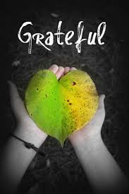 gratitude quotes churchill 753 best attitude of gratitude images on pinterest gratitude