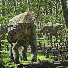 nasutoceratops pictures u0026 facts the dinosaur database